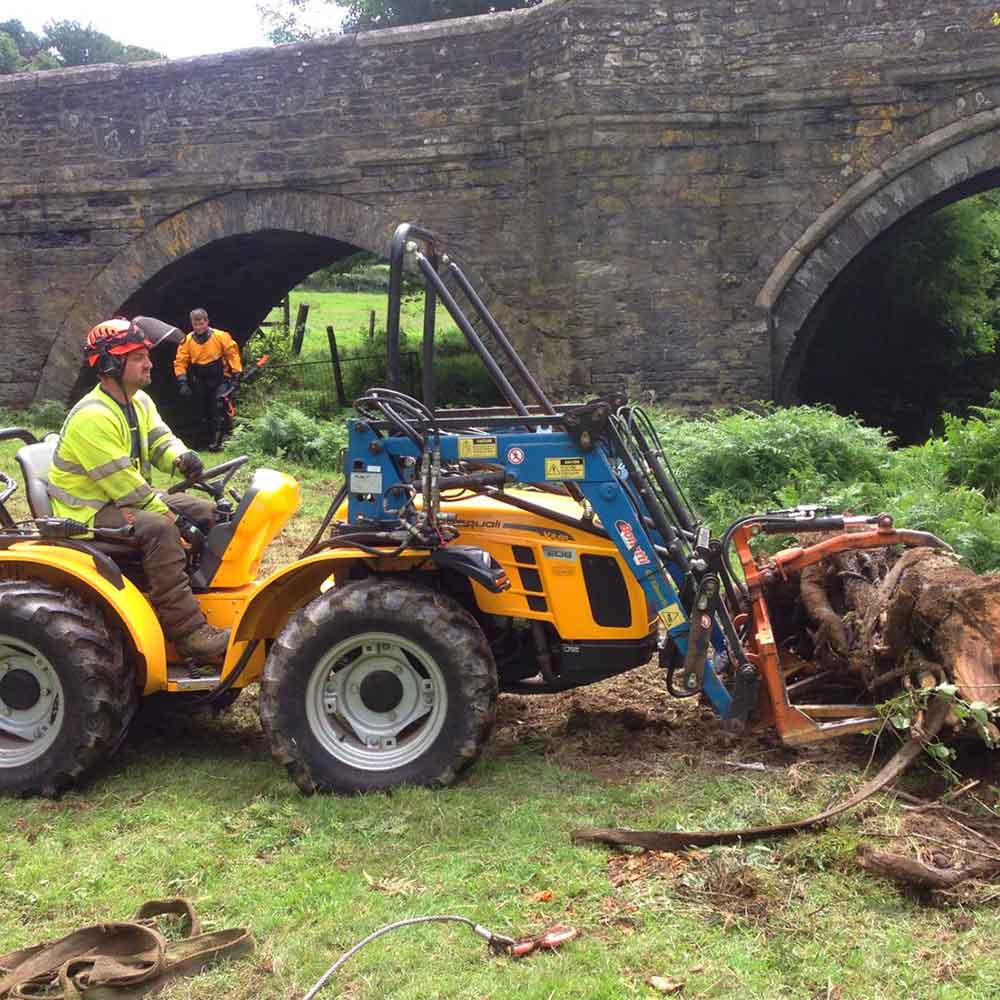 clearing a fallen tree Hartwood Treeworks
