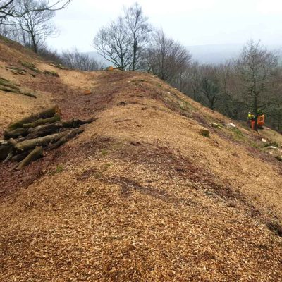 Hembury Fort ditches Hartwood Treeworks