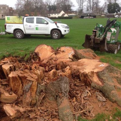Stump grinding and removal Hartwood Treeworks