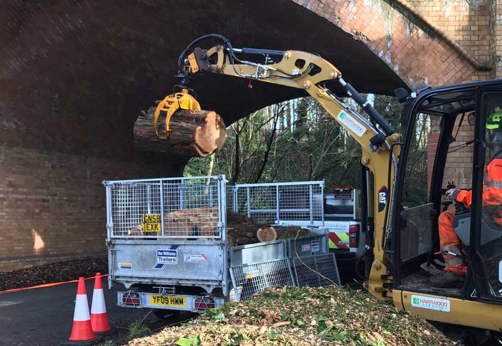 Tree Removal Hartwood Treeworks